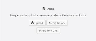 Audio File Upload