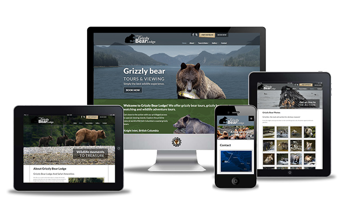 Wildlife Tourism website design