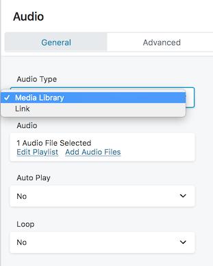 audio module