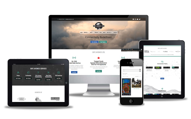 avionics website
